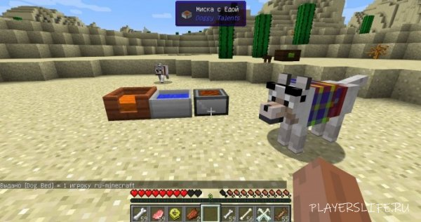 Мод Doggy Talents для Minecraft